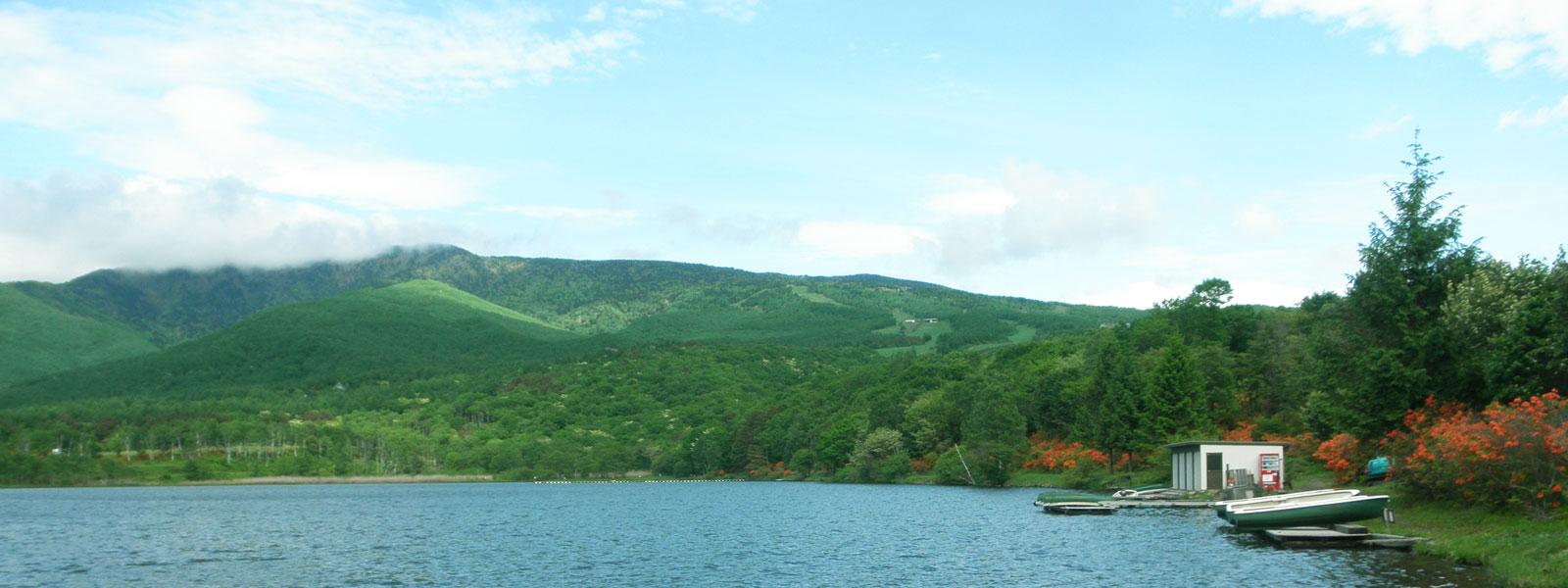 バラギ高原の自然を満喫!